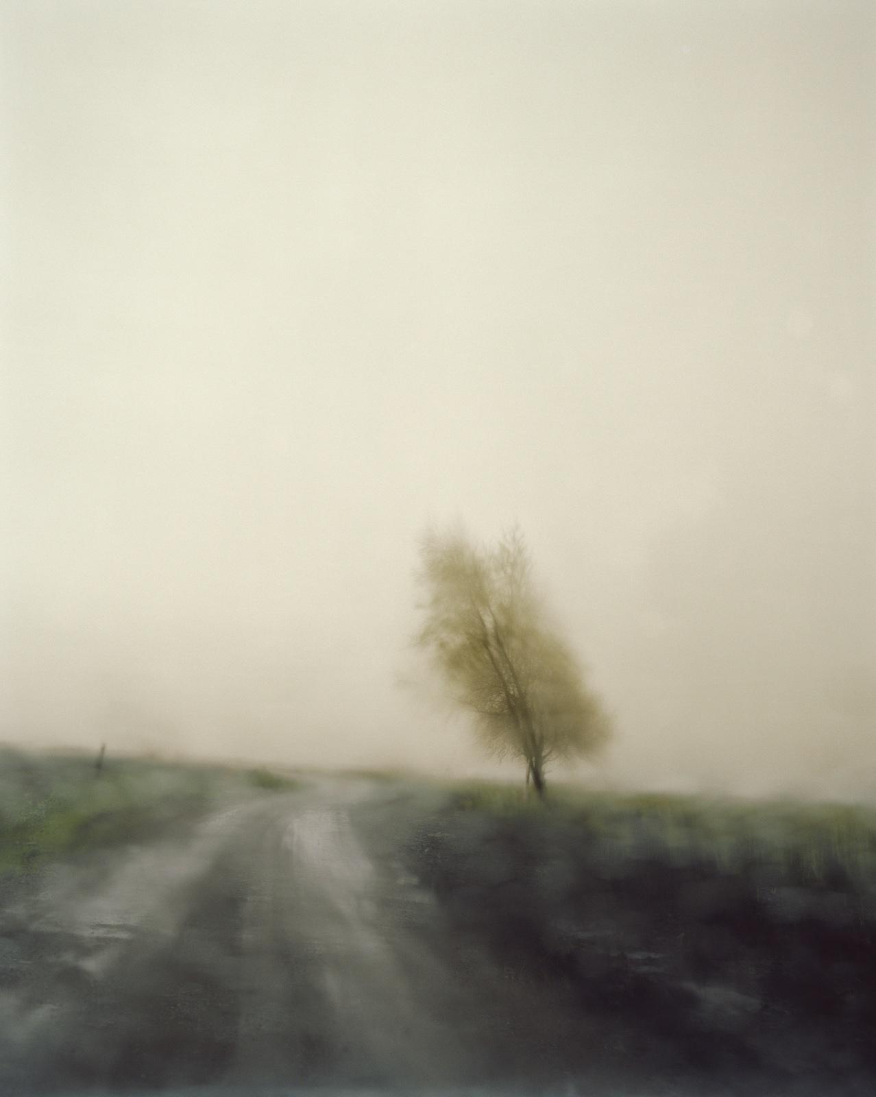 foto: © Todd Hido - Untitled #6405-8, 2007, vaag landschap met boom