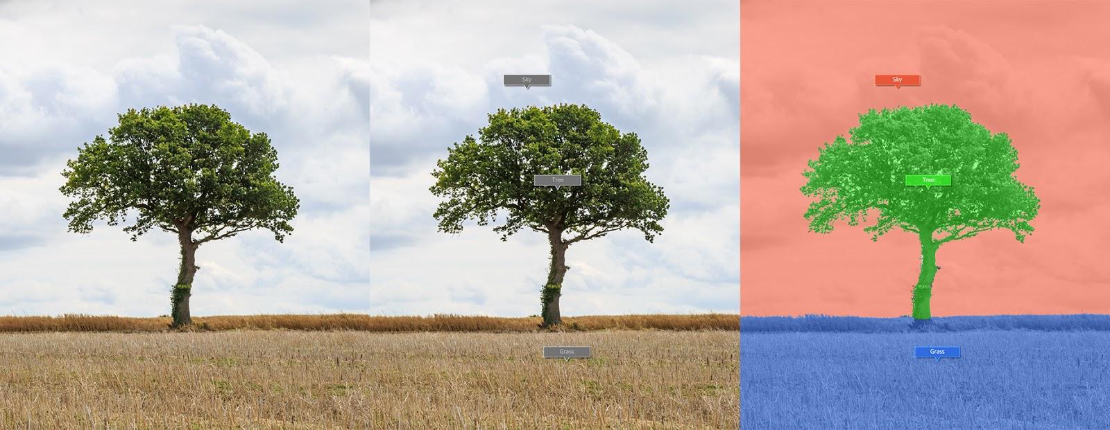 foto van drie beelden van bomen bewerking in LandscapePro 3