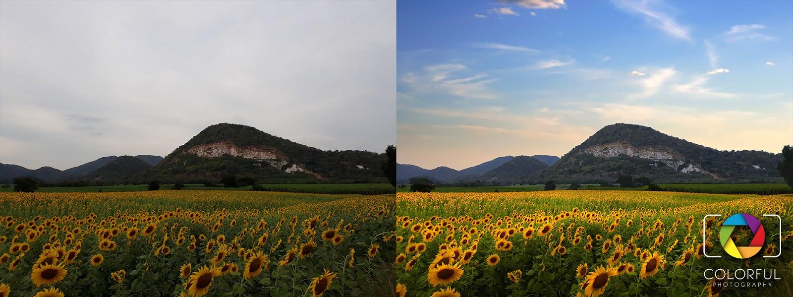 foto van twee beelden van landsc hap met heuvel voor bewerking in LandscapePro 3