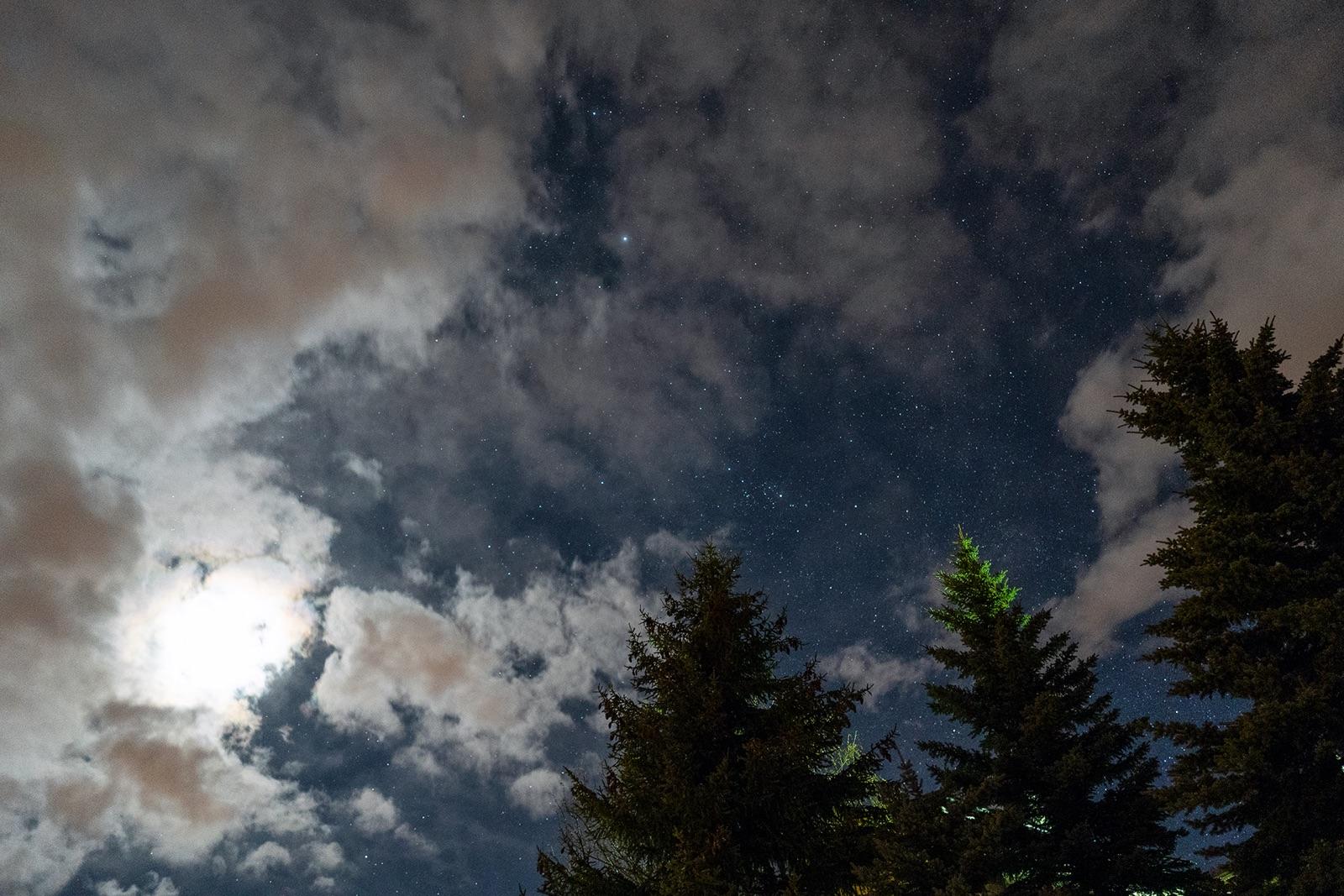 foto van lucht en bomen bij nacht waarbij je de melkweg ziet