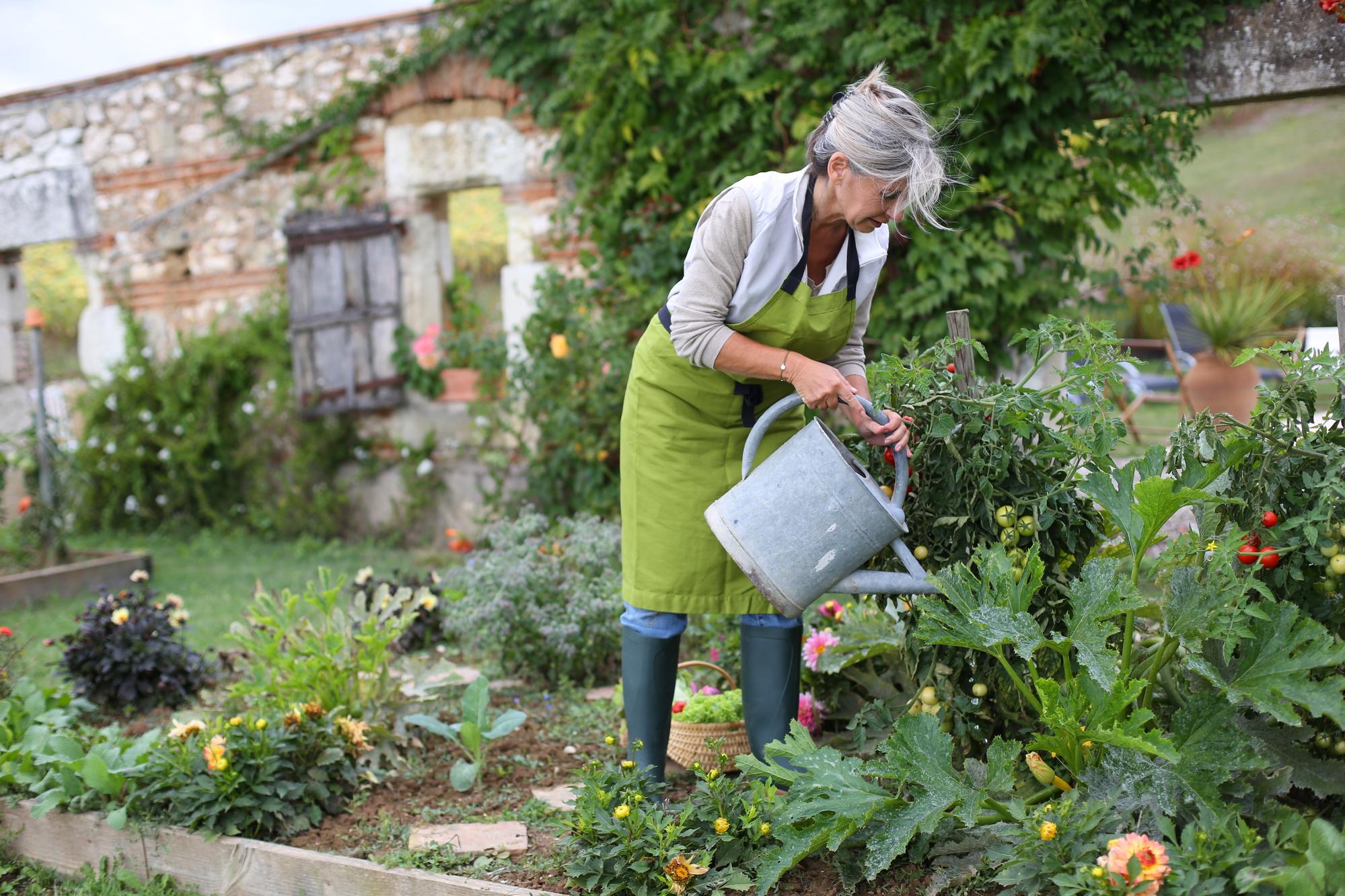Vrouw geeft planten water in eigen tuin bij huis
