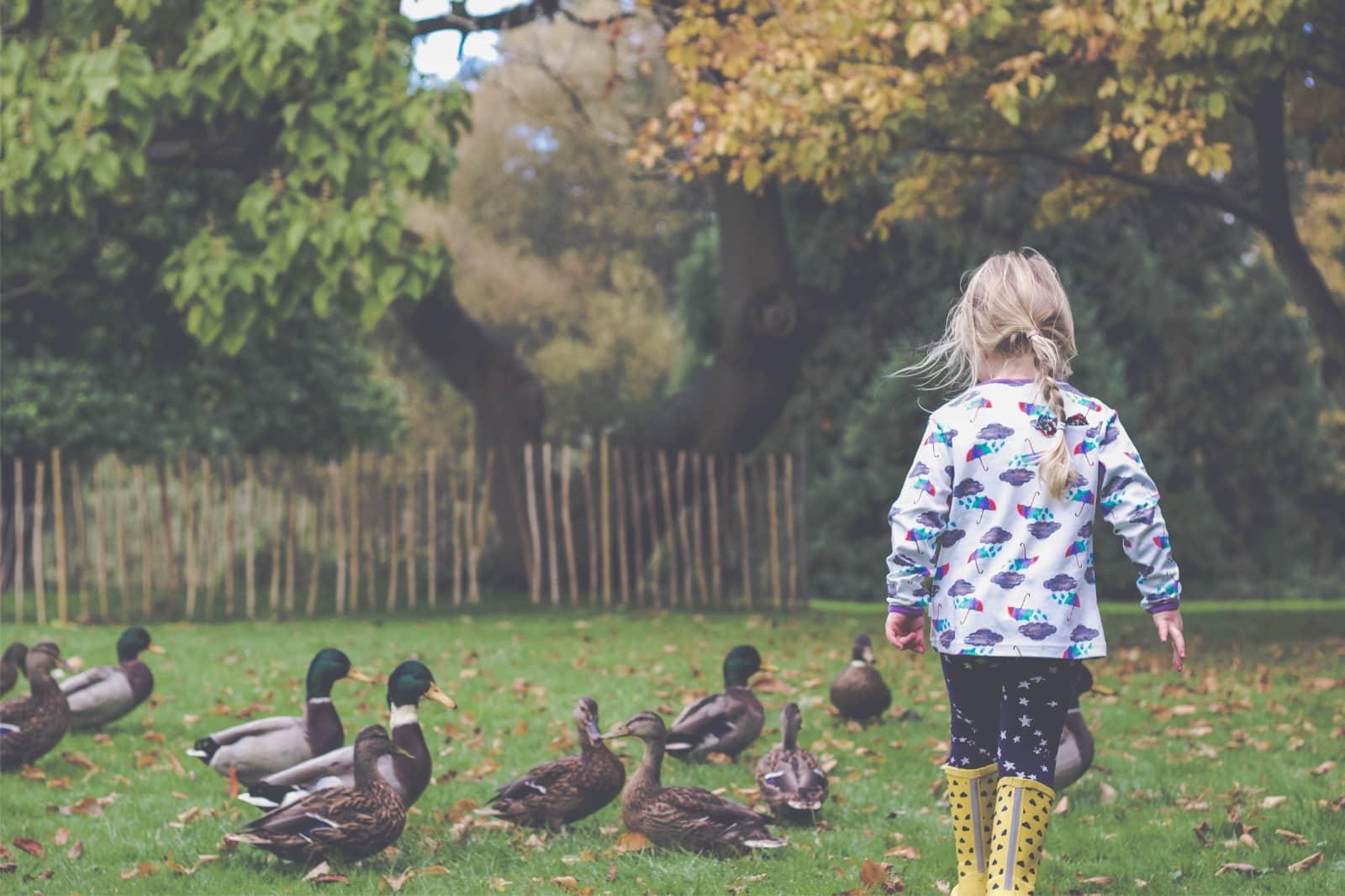 Klein meisje in tuin met eendjes door Hannah Harding
