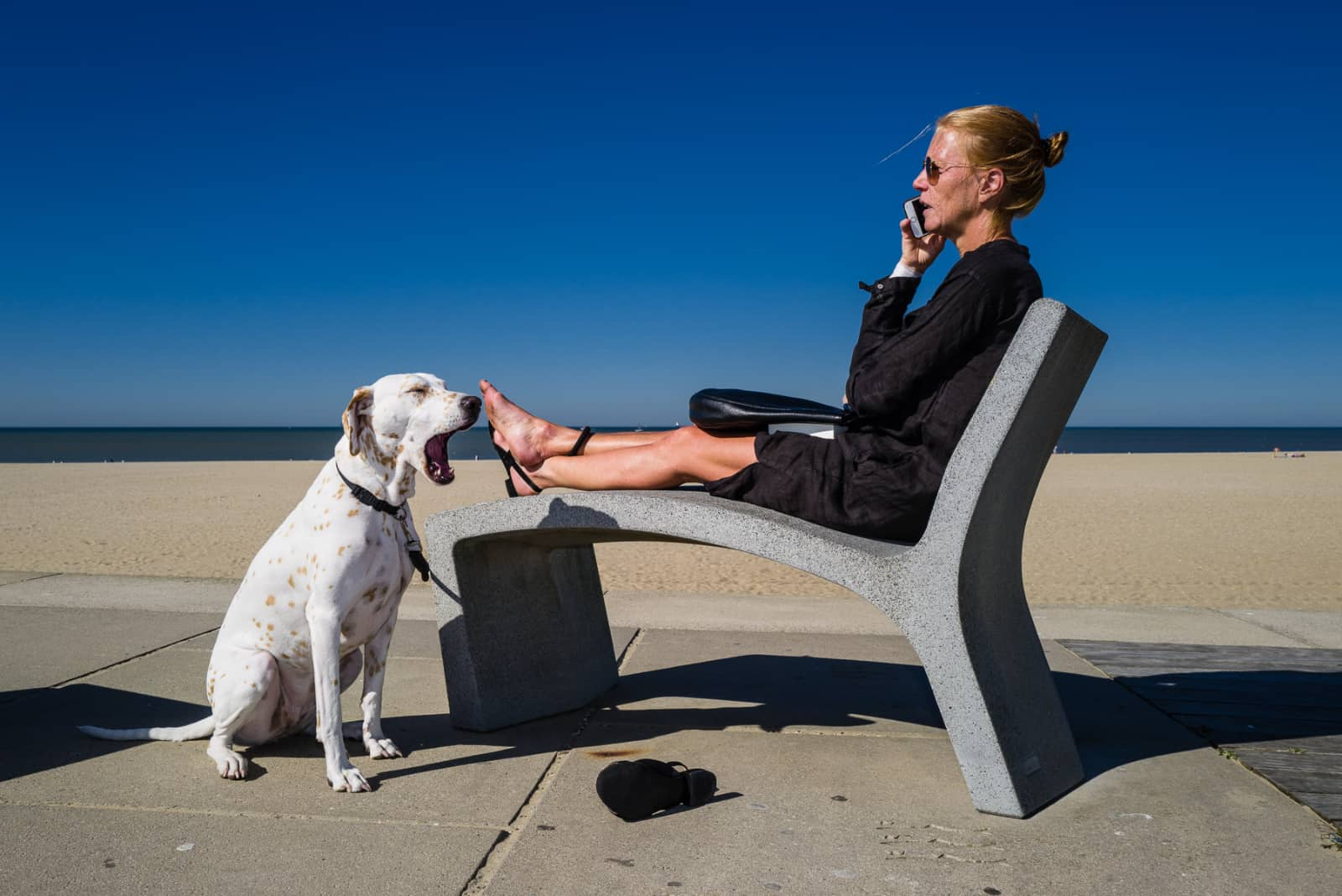 Vrouw met telefoon op stoel bijstrand en hond die gaapt bij haar voeten - Guido van der Zwan