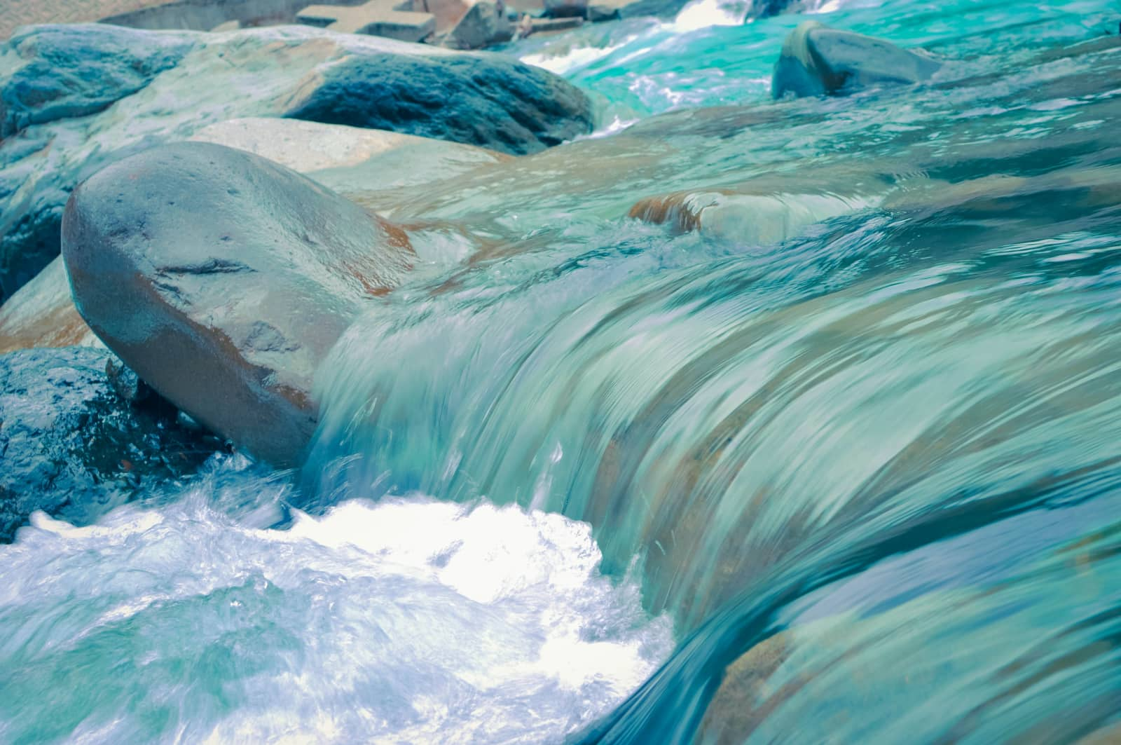 foto: leo rivas, zee met zeevonk