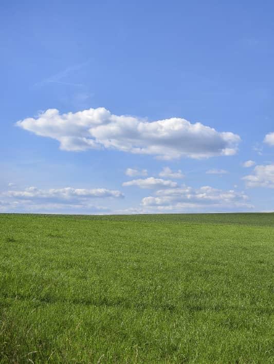 5 tips voor fotograferen op zonnige dagen