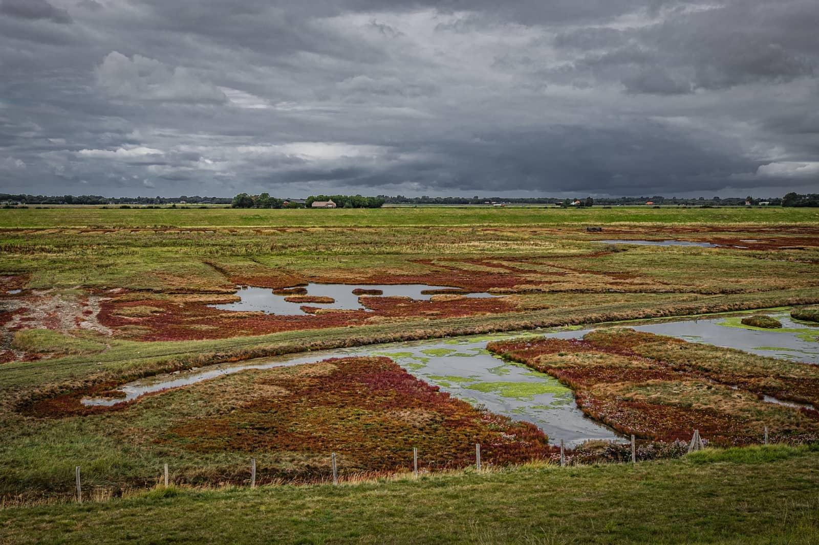 schelpenhoeck zeeland nederland