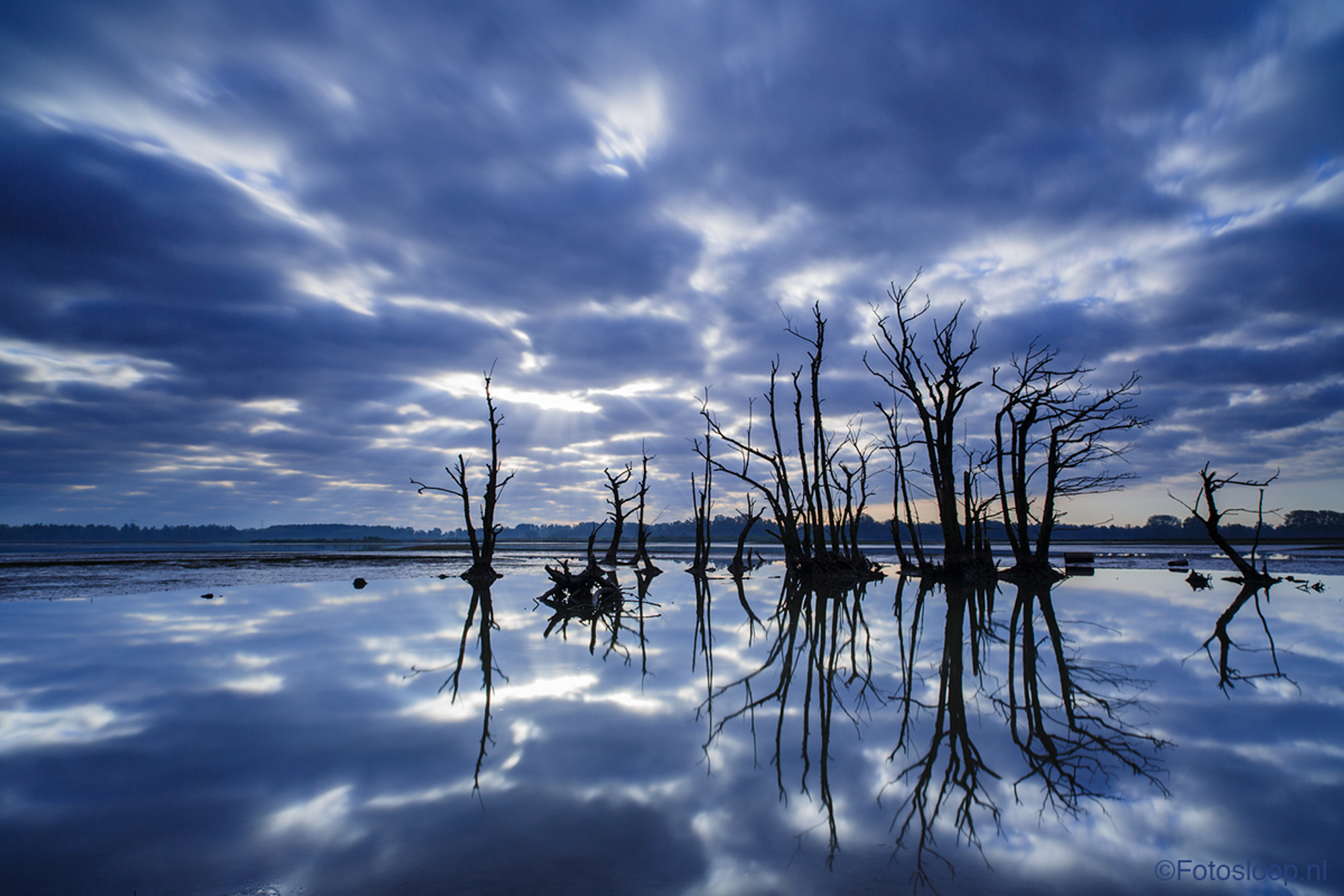 Biesbosch reflecties op water in blauw, door Bas Breetveld