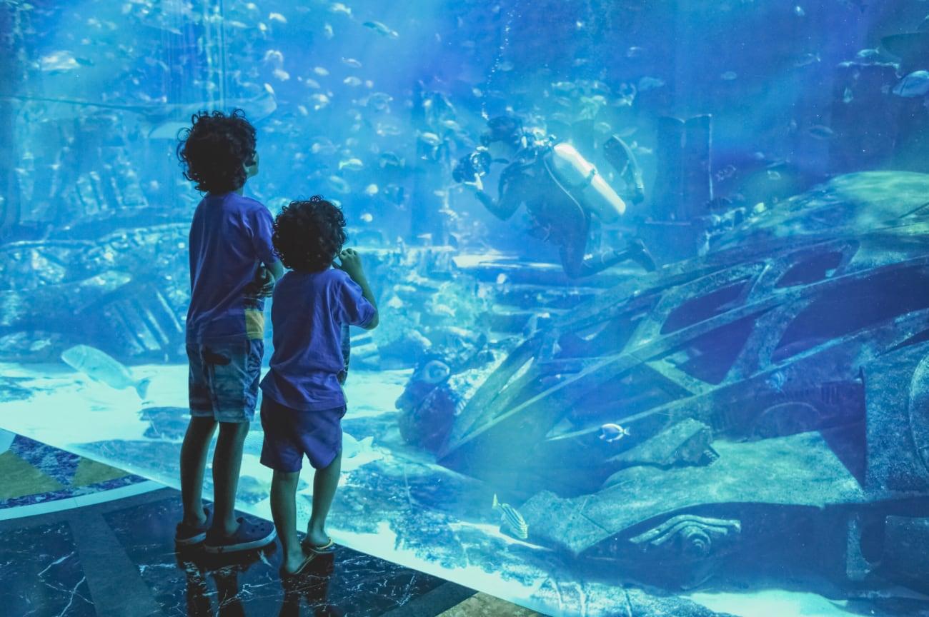 silhouettes-kids-big-aquarium