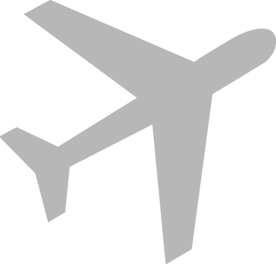 aviation expert icon