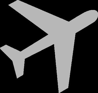 aviation expert icon
