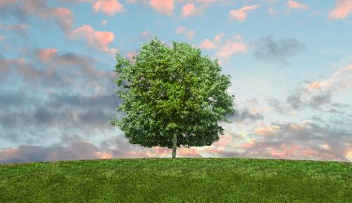 Liikelahjat Ympäristöystävälliset tuotteet