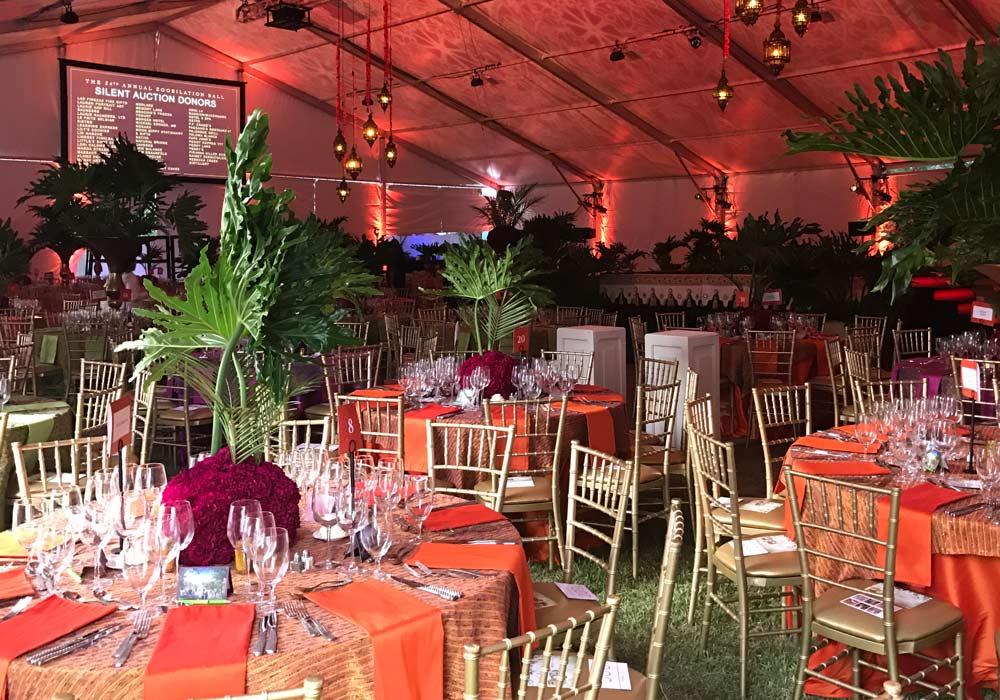 Party Tent Chiavari Chairs