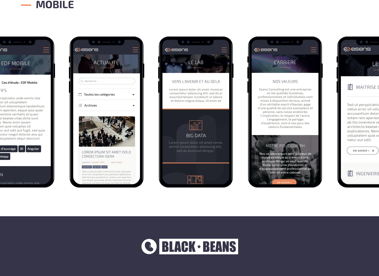 Realisation - Black Beans
