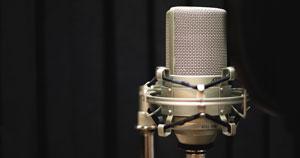 An MXL 990 condenser microphone.