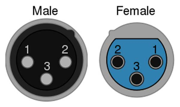 An image of a male XLR connector's pins and a female XLR connector's ports.