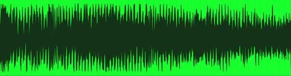 An image of a mono audio file.