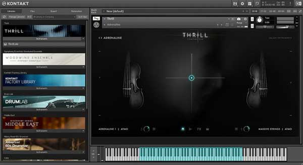 An image of Native Instruments' Kontakt 6 VST plugin.