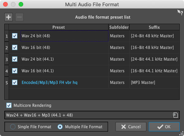 An image of Wavelab's Multi Audio File Format window.