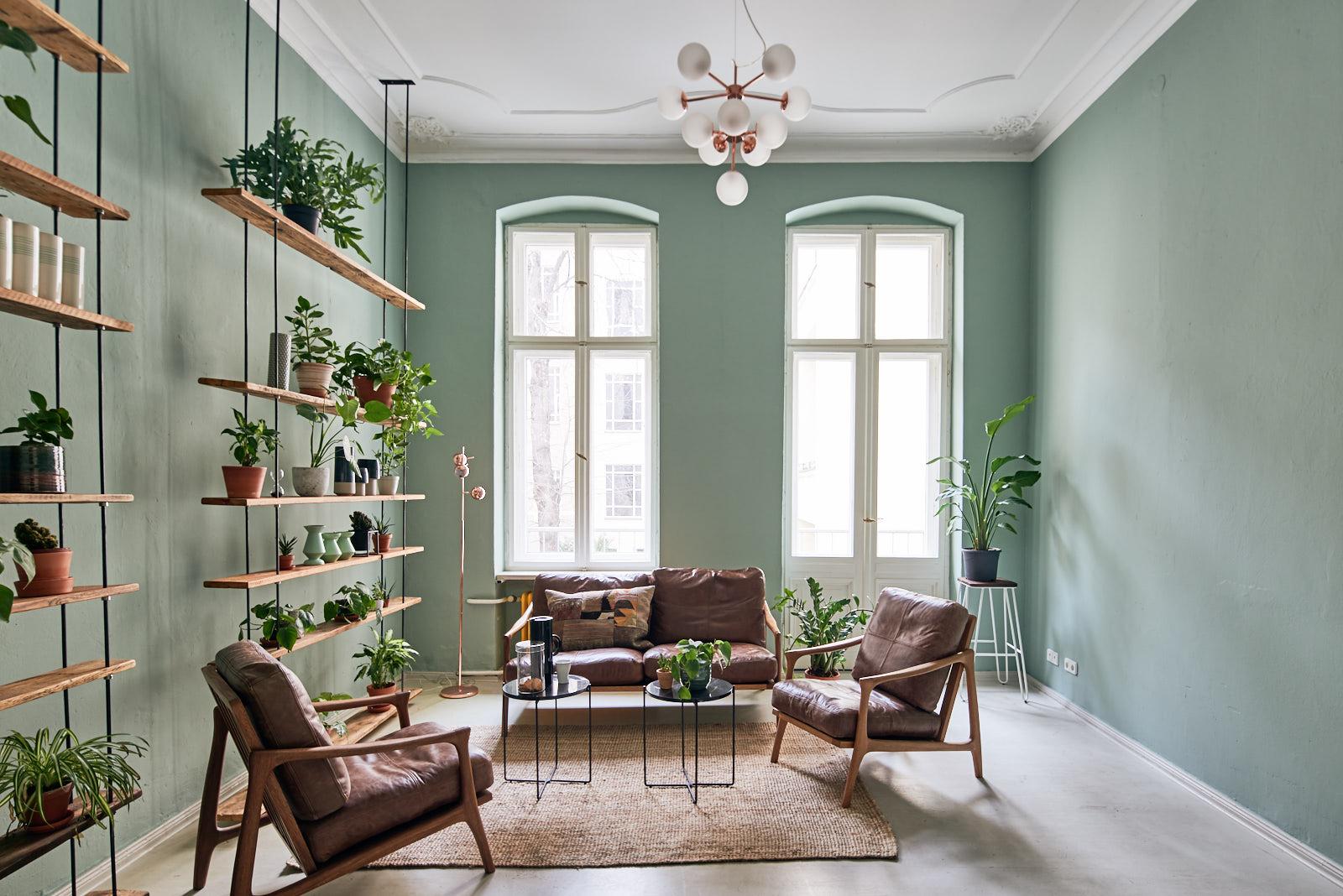 Foto eines grünen Raums mit 2 hohen Fenstern, Regalen und Sofa