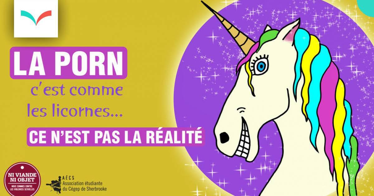 L'équipe du CALACS la Bôme Gaspésie est fier de soutenir la campagne de sensibilisation Ni viande ni objet