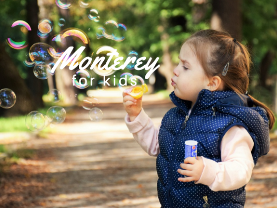 What To Do In Monterey For Kids