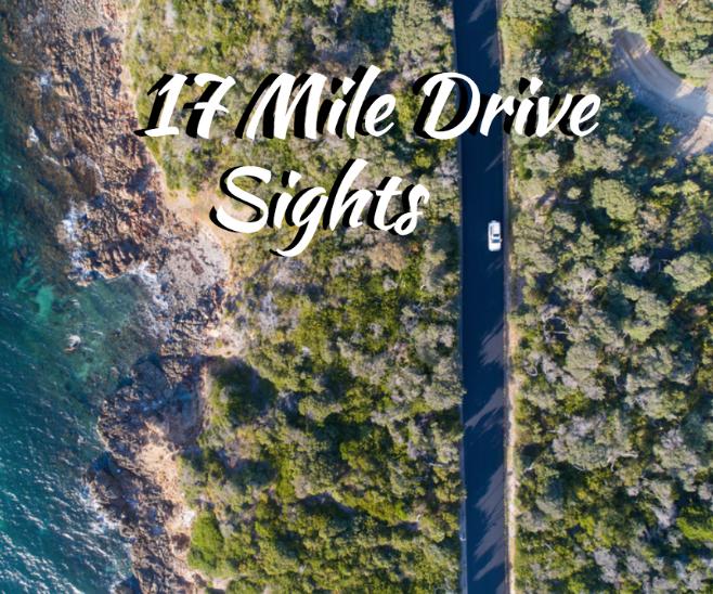 monterey 17 mile drive