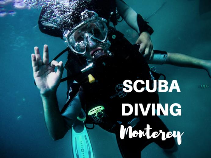 scuba diving monterey ca