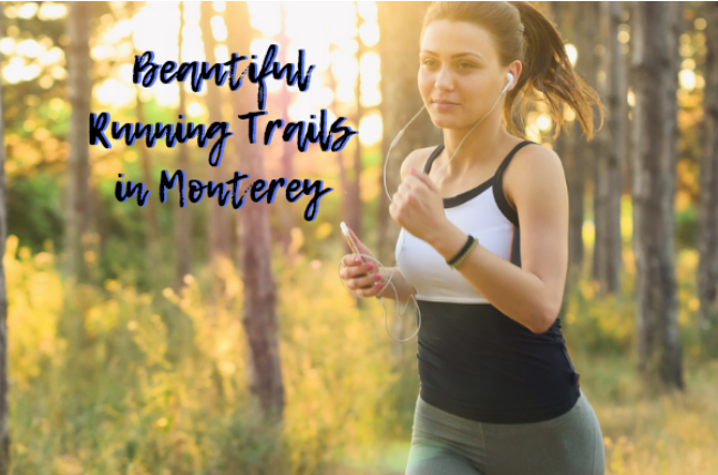 monterey running trails