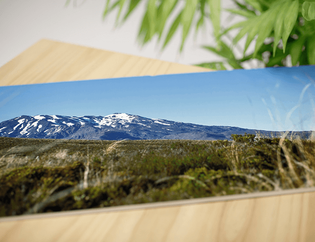 Need a panorama picture printed on photo paper?