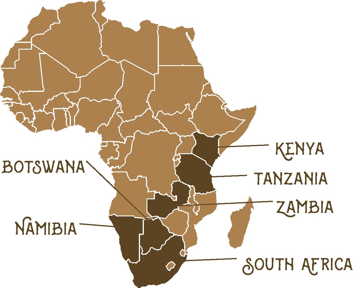 Safari Spots