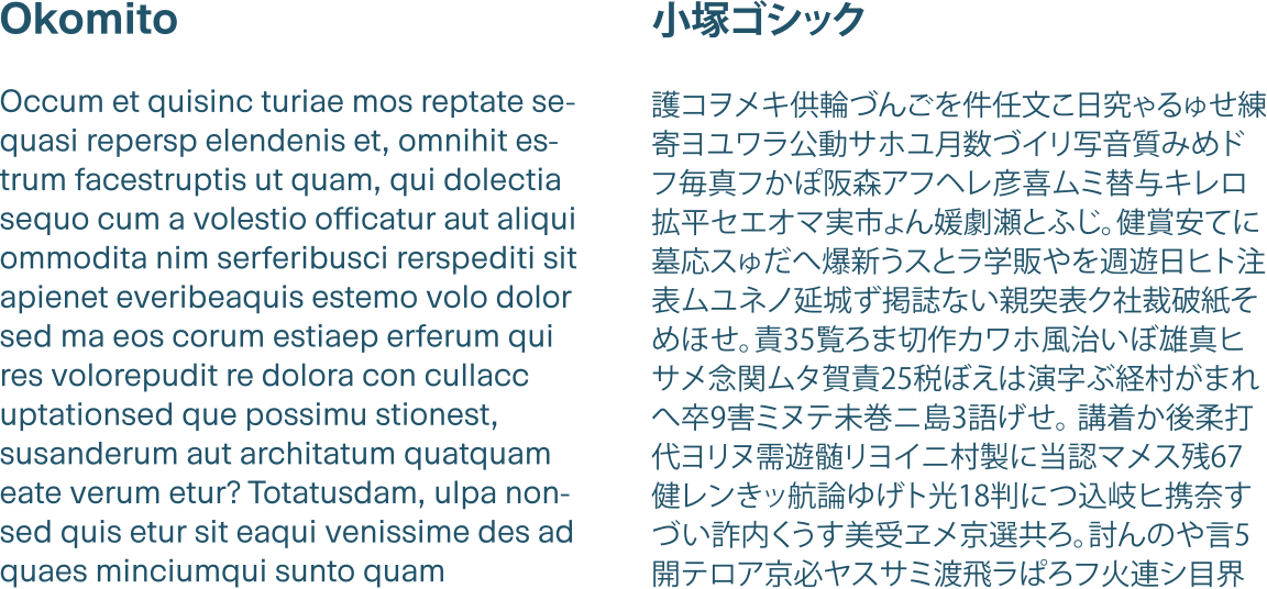 Two columns of text showing the English and Japanese type styles used throughout the document.