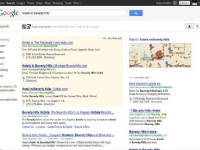 google search results page