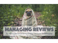 managing customer reviews