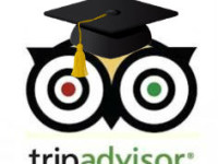 tripadvisor owl with graduation cap
