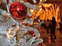 close-up of frosted christmas tree with red ornament