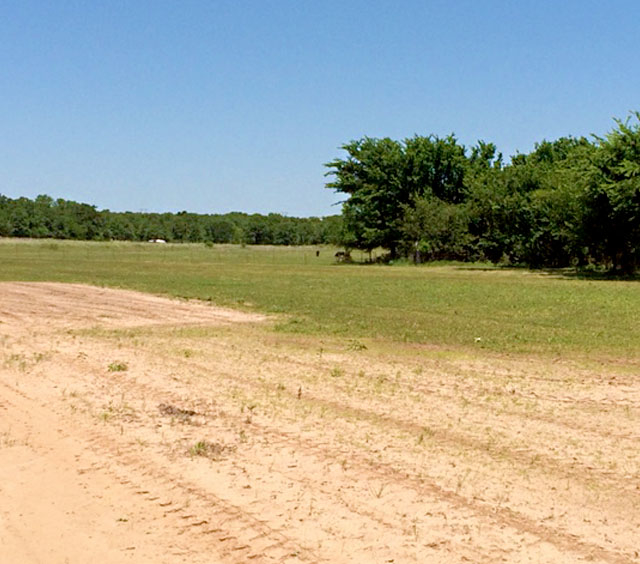 685 County Rd 1591, Sunset, TX 76270