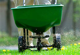 Lawn Fertilization in Salt Lake City