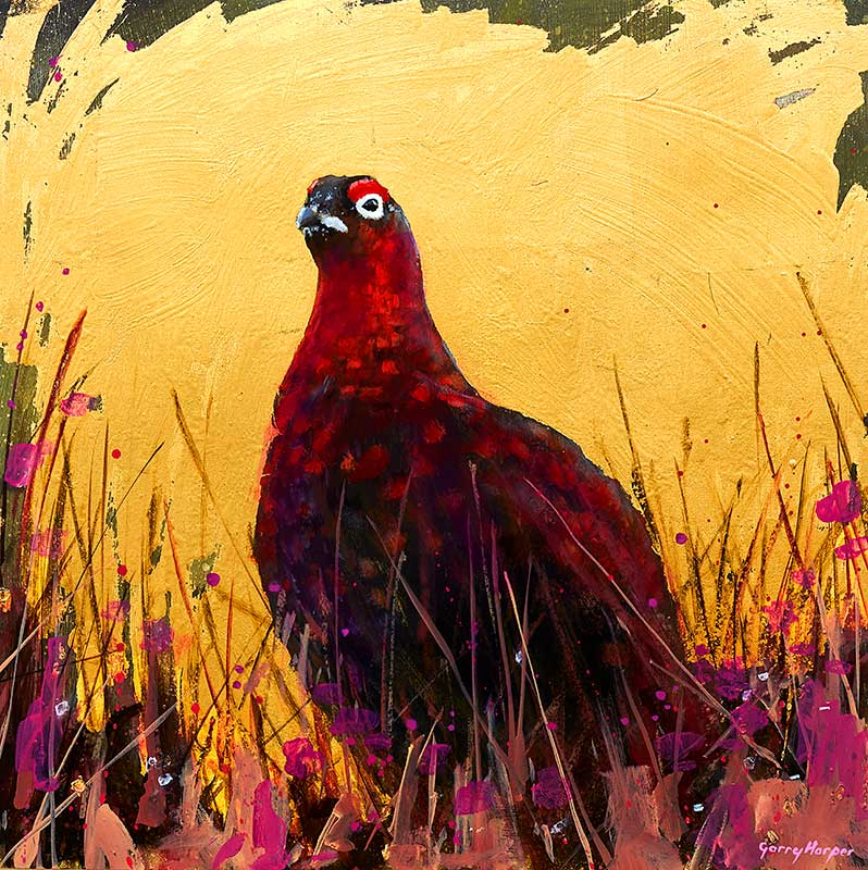 Scottish red grouse painting by Garry Harper