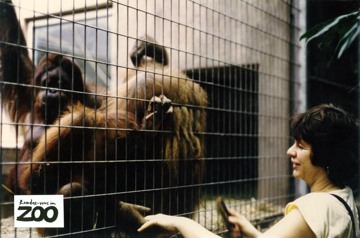 rendez-vous-im-zoo-4