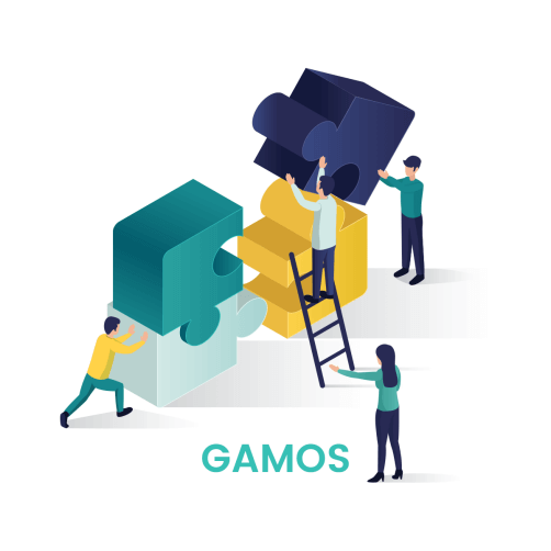 Success Story: GAMOS