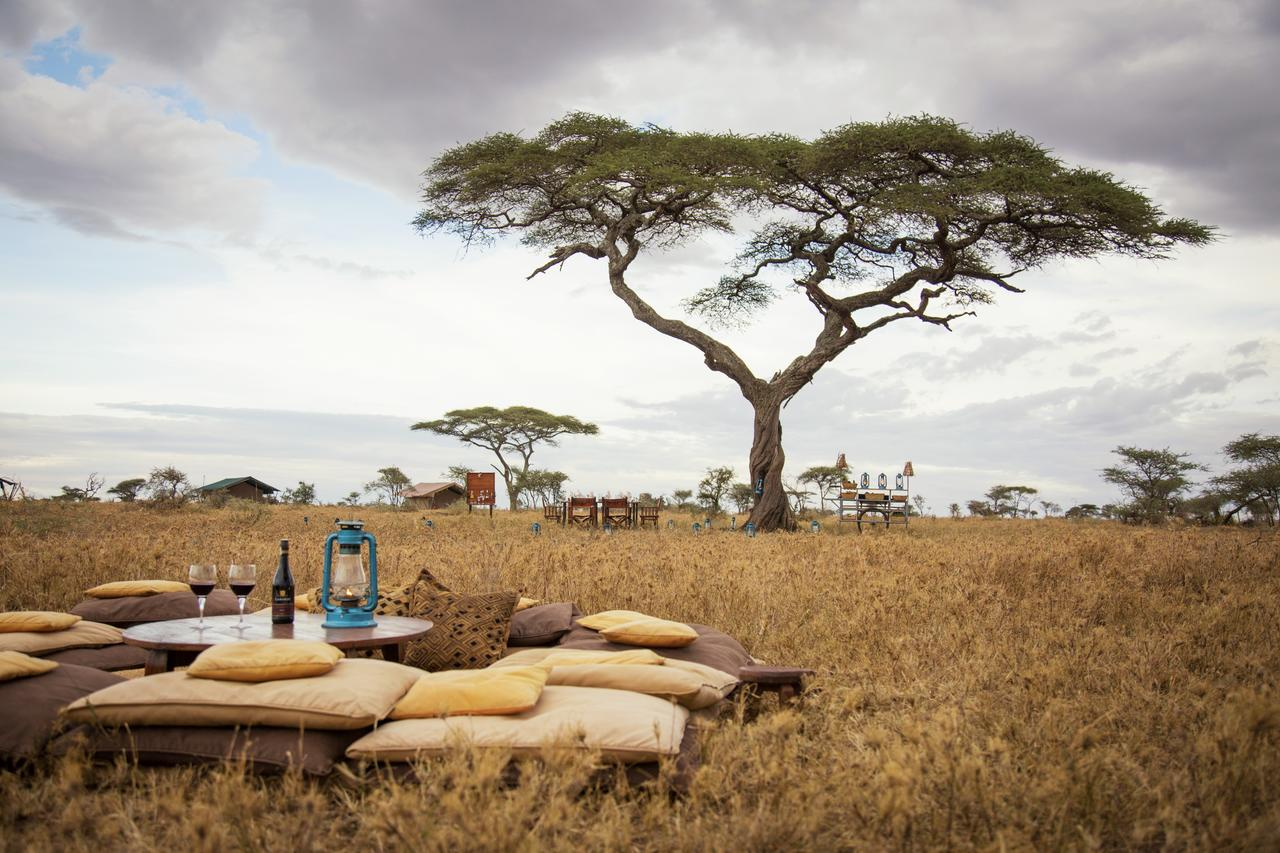 A traditional-style tented camp set up in contemporary, relatively high-end style, it caters to a 90-per-cent Spanish clientele.