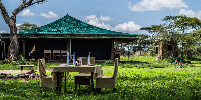 Ang'ata Seronera camp is a classic – simple tented safari camp, located in the center of the Serengeti in a beautiful setting with a view of the plains.