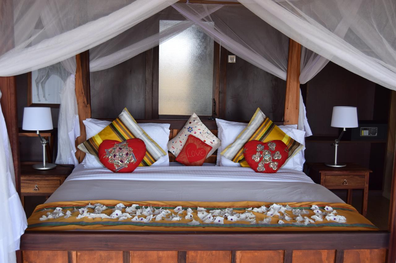 Tarangire Simba Lodge is situated in a wildlife-rich area with unhampered views to beautiful Lake Burunge, bordered by the park and a Wildlife Management Area.