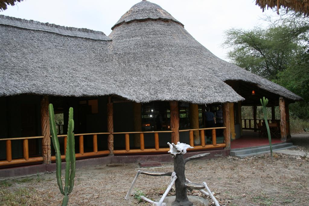 Roika Tarangire Tented Lodge a unique Flora & Fauna of Shrublands and Acacia Woodlands with hearty Baobab trees strewn around.