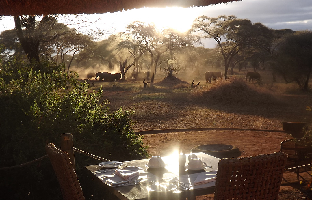 Sanctuary Swala is located in a secluded area of Tarangire National Park, one of the most exciting and least visited parks in the country.