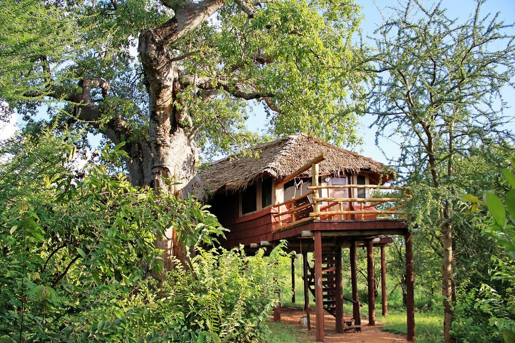 Each Treetops Room boasts one of the largest bedrooms to be found in any camp or lodge in East Africa