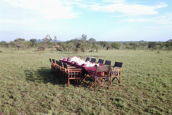 Serengeti Tanzania Luxury Bush Camp is a semi permanent camp offering wilderness and luxury in Serengeti National Park.