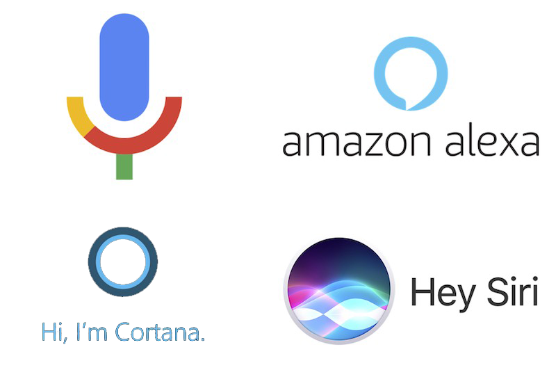 Voice Search 2021 Trend