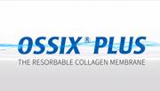 Ossix plus