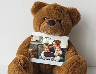 Photo Bears